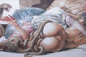Erotické komiksy – sex vobrázcích a bublinách