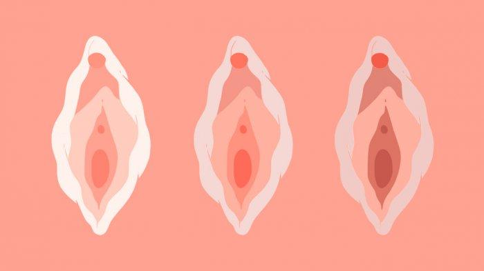 Jak správně pečovat o vaginu? Nedejte šanci zápachu, mykóze ani infekcím