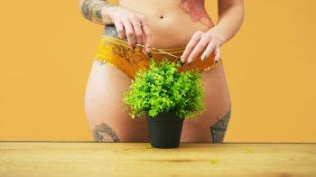 Epilace a depilace intimních partií: jak a čím zkrotit divočinu v kalhotkách