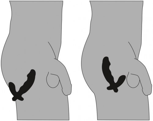 Vibrační stimulátor prostaty ve tvaru penisu Rebel