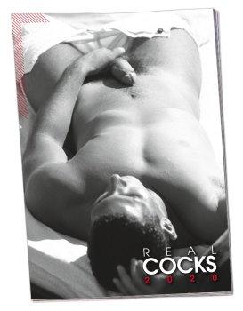Nástěnný kalendář REAL COCKS 2020 – Sexy erotické kalendáře