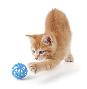 Hrajte si jako kotě s míčkem