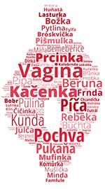 Infografika: Synonyma pro slovo vagina