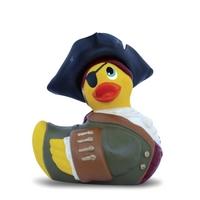 Kachna pirátka
