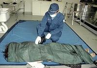 'Mrtvola' silikonové panny na fotografii japonské policie