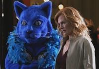 Forenzní vědkyně Catherine Willows z CSI Las Vegas pomáhá rozlousknout případ mrtvého furíka