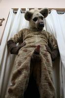 Ukázka murrsuitu: hyena