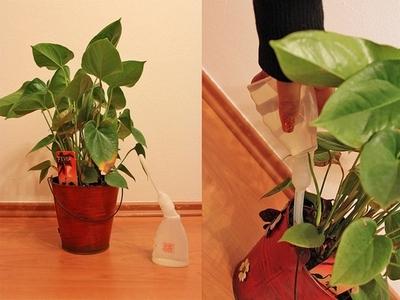 Sada pro zavlažování květin z náčiní pro klystýr