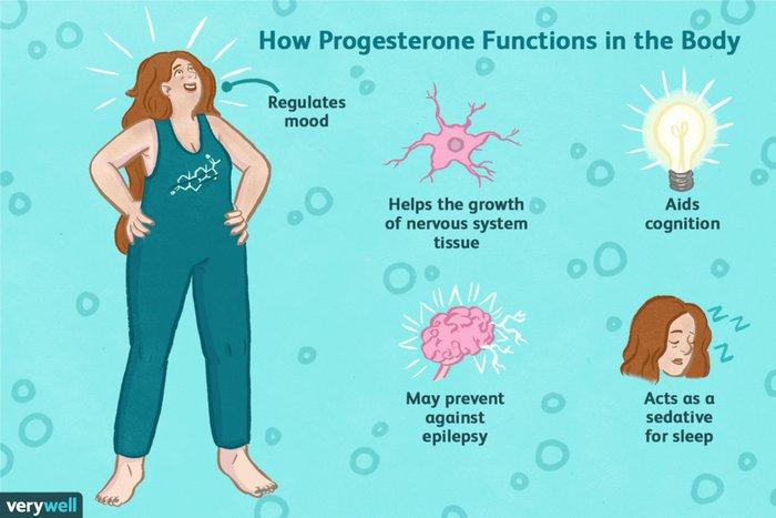 Vliv estrogenu na mozek