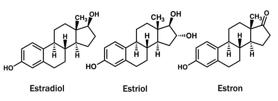 Druhy Estrogenu