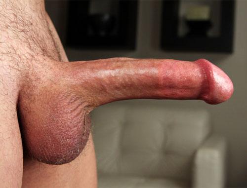 Mužský penis, pyj, falus, péro, šulin